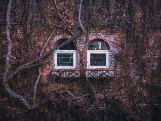 Blockchain in Real Estate Rental