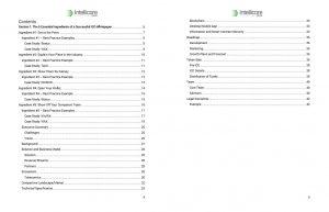 ICO Whitepaper Template and Guide Screenshot 3