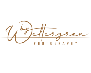 Wettergren Logo